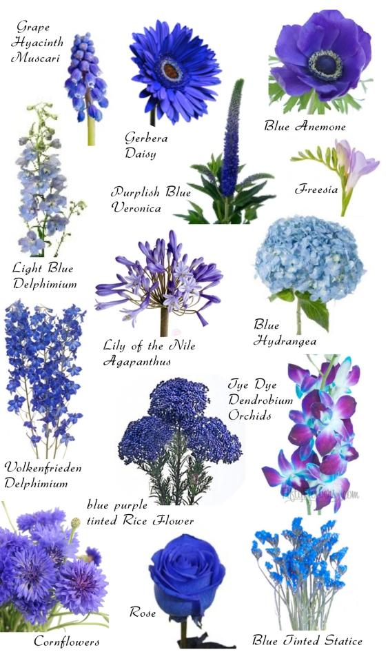 dark-blue-flowers